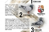 Folio_moje_ptaki2